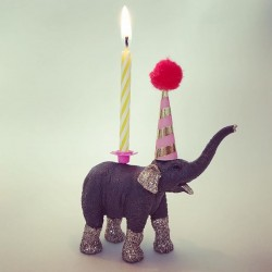 Elefant kalv lysholder som caketopper til fødselsdagskage