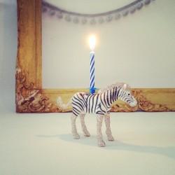 Zebra lysholder og kage topper til fødselsdagskage