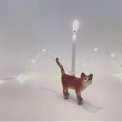 Orange Kat lysholder som kage topper til fødselsdagskage