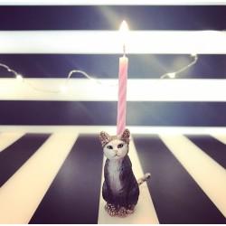 Grå Kat lysholder som kage topper til fødselsdagskage