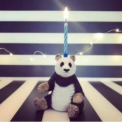 Siddende Panda lysholder som kage topper til fødselsdagskage