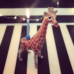 1 Giraf lysholder og kage topper til fødselsdagskage