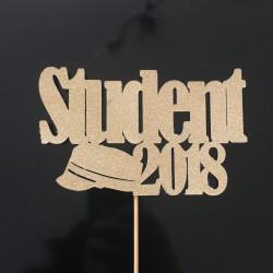 student 2018 kagetopper