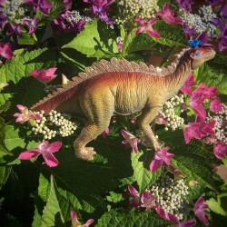 Tenontosaurus caketopper