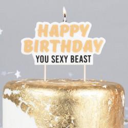 Fuck it, let's eat cake fødselsdagslys fra Gingerray