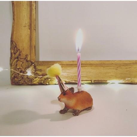Hamster lysholder